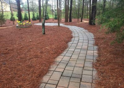 Concrete paved pathway